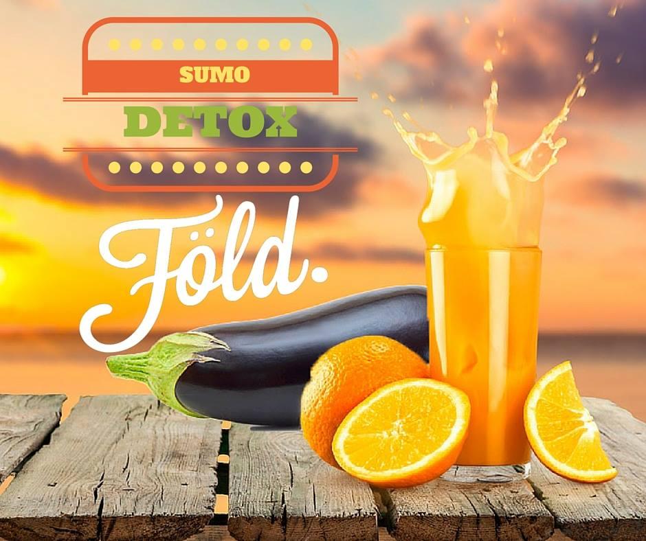 Refresque-se com o Sumo Detox Föld de beringela com laranja! Ingredientes: 20 ml sumo laranja 2 rodelas de beringela 2 colheres de pó de Clorela Föld 100ml de água gelada Misture tudo no liquidificador e beba bem fresco